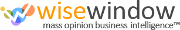 WiseWindow logo